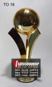 piala olahraga TO18 piala walikota cup